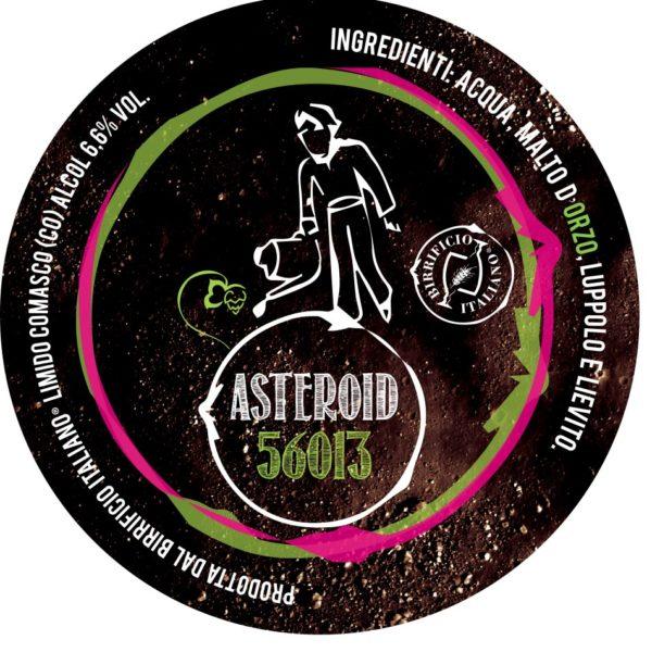 ASTEROID 56013